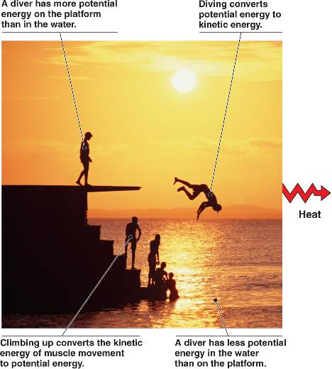 application of potential energy in real life